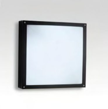 Wall and ceiling luminaires 102900